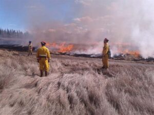 Neechi Resources Ltd Firefighters in action