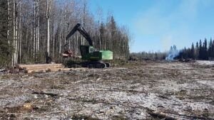 Neechi Resources Ltd - We specialize in logging and clearing projects.
