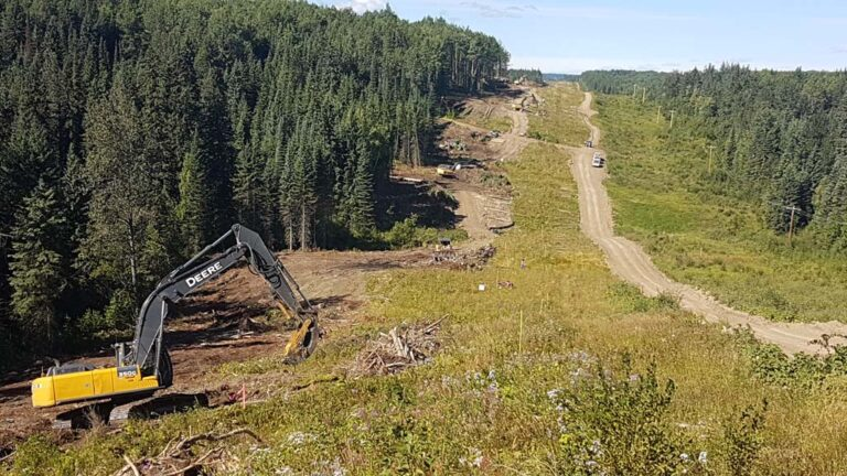 Neechi Resources Ltd Logging and Clearing Services