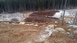 Neechi Resources Ltd Reclamations