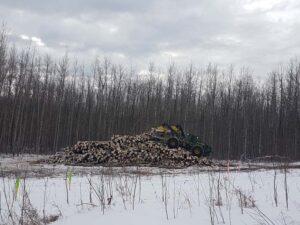 Neechi Resources Ltd - Stacking logs